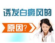 白癜风初期治疗方法