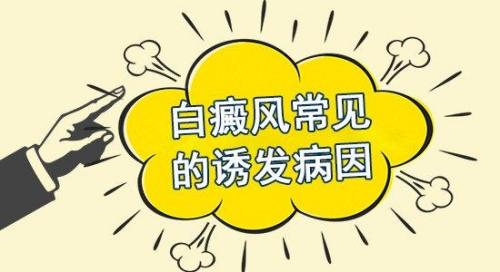 云南白癜风专科:白癜风的病因是什么呢?